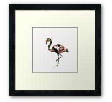 Flower Power Flamingo Framed Print