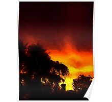 Weeping Tree Silhouette and Sunset 2 Poster