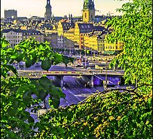 A peek of the Old Town, Stockholm. by Tim Constable