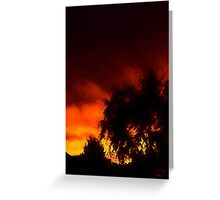 Weeping Tree Silhouette and Sunset 1 Greeting Card
