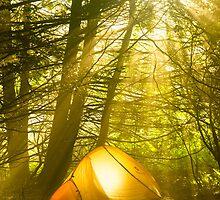 Morning light by ZachKracht