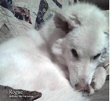 Rogue by Lydia Marano