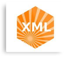 xml programming language hexagonal hexagon sticker Metal Print