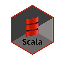 scala programming language hexagonal hexagon sticker Photographic Print