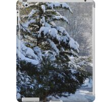 A wintry drive in Pike Creek iPad Case/Skin
