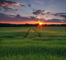 Sunset at home - Wexford Ireland by Royston Palmer