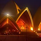 Opera House Gold by Michael Matthews