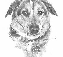old friend dog drawing by Mike Theuer
