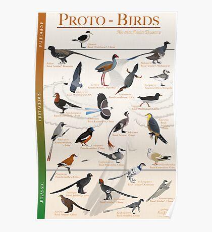 Proto-Birds Poster Poster