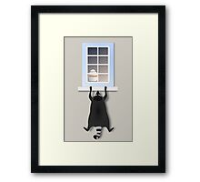 Cheeky racoon Framed Print