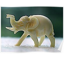 Ivory Elephant Poster
