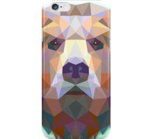 The Bear iPhone Case/Skin