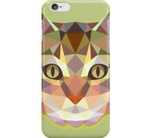 Graphic Cat iPhone Case/Skin