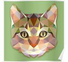 Graphic Cat Poster