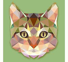 Graphic Cat Photographic Print