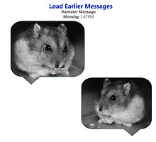 Hamster Message by berkeleybanana