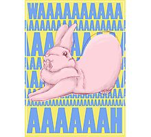 Screaming Bunny Photographic Print