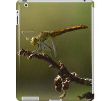 Summer Heat iPad Case/Skin