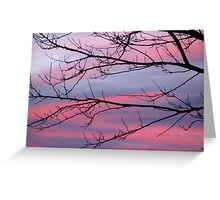 December Sunset Greeting Card