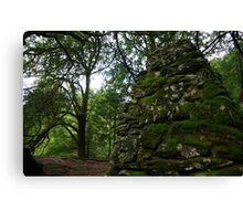 Druid Stones Canvas Print
