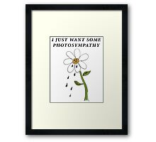 photoSYMPATHY Framed Print