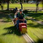 Miniature Railway by John Quixley