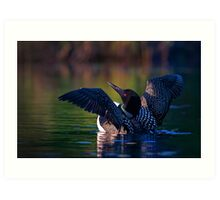 Rise 'n shine - Common loon Art Print