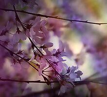 Color by DerekEntwistle