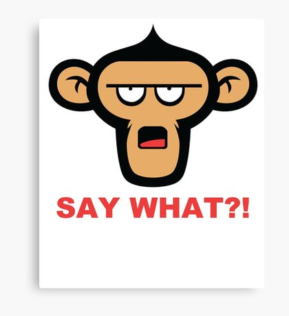 Say What?! Canvas Print