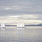A Winters Sail by Leanne Kelly