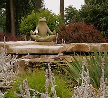 The Meditating Frog by ctheworld
