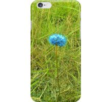 Flower and green gras iPhone Case/Skin