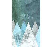 House Stark Poster Photographic Print