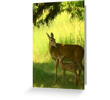 White Tailed Fawn and Doe Greeting Card