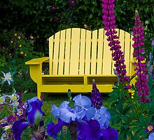 The Yellow Bench by thomr