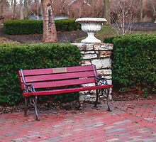 BENCH AT BENHAM'S GROVE by pjm286