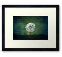 Dandelion Flower Fluff Starry Sky Art Framed Print