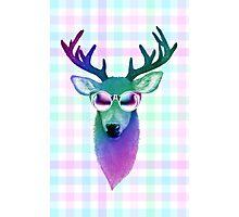 Rainbow Deer Photographic Print