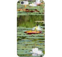 Waterlilies In The Morning iPhone Case/Skin