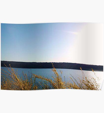 FINGER LAKES CAYUGA LAKE Poster