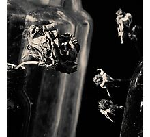 Dead Flowers and Glass #3 Photographic Print