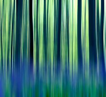 abstract forest by kittenmomo