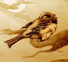 Sparrow by Moonlight by Patricia Howitt