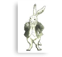 Mr. Rabbit and His Golden Watch Canvas Print