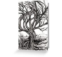 Twisted Tree, Ink Drawing Greeting Card
