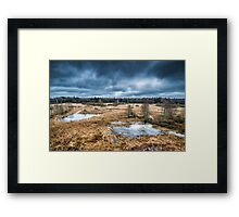 Bialowieza National Park Framed Print
