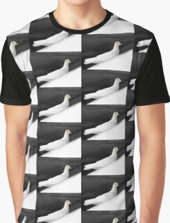 Coo, Coo Coo Graphic T-Shirt