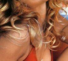 Farrah Fawcett Charlies Angels Sticker