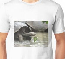 Galapagos turtule, Galapagos tortoise Unisex T-Shirt