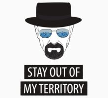 Breaking Bad - Stay out of my territory by Serdar G